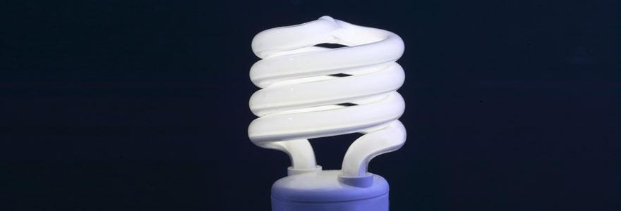 ampoule-économique