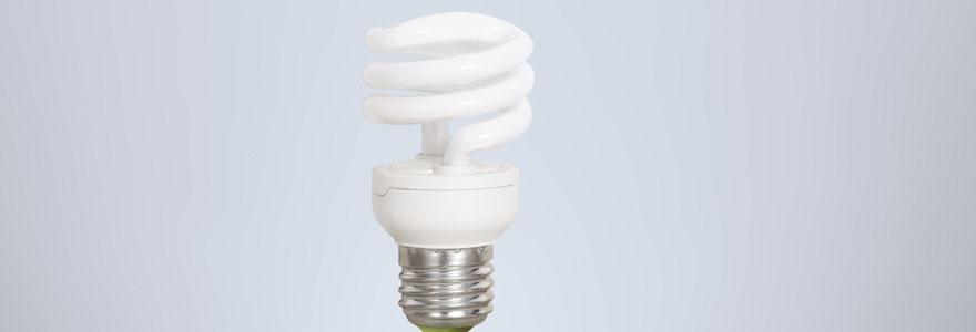 ampoules fluo-compactes