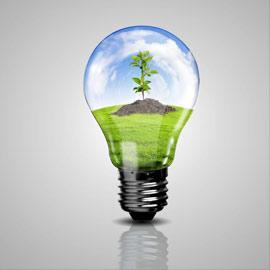 Les ampoules incandescence halog ne caract ristiques - Faire des economies d energie ...